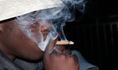 Le cannabis et la vulnérabilité du cerveau à l'adolescence