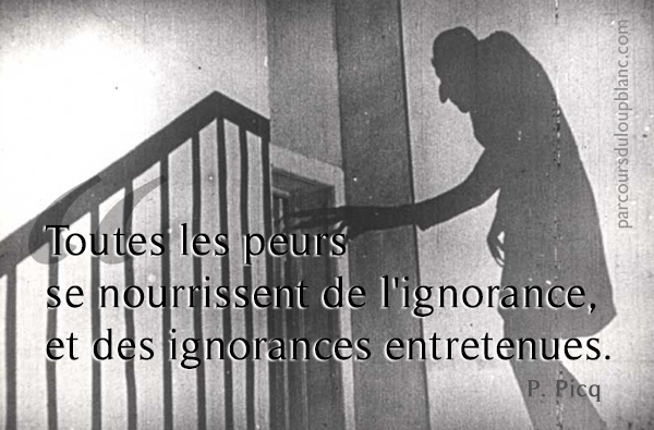 Peurs imaginaires ou danger reel ?
