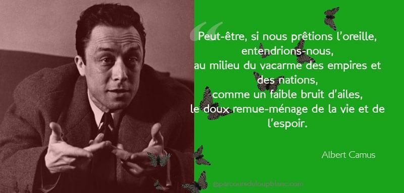 citation-Camus-pensee-positive