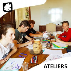 Ateliers coaching developpement personnel- Gestion des émotions